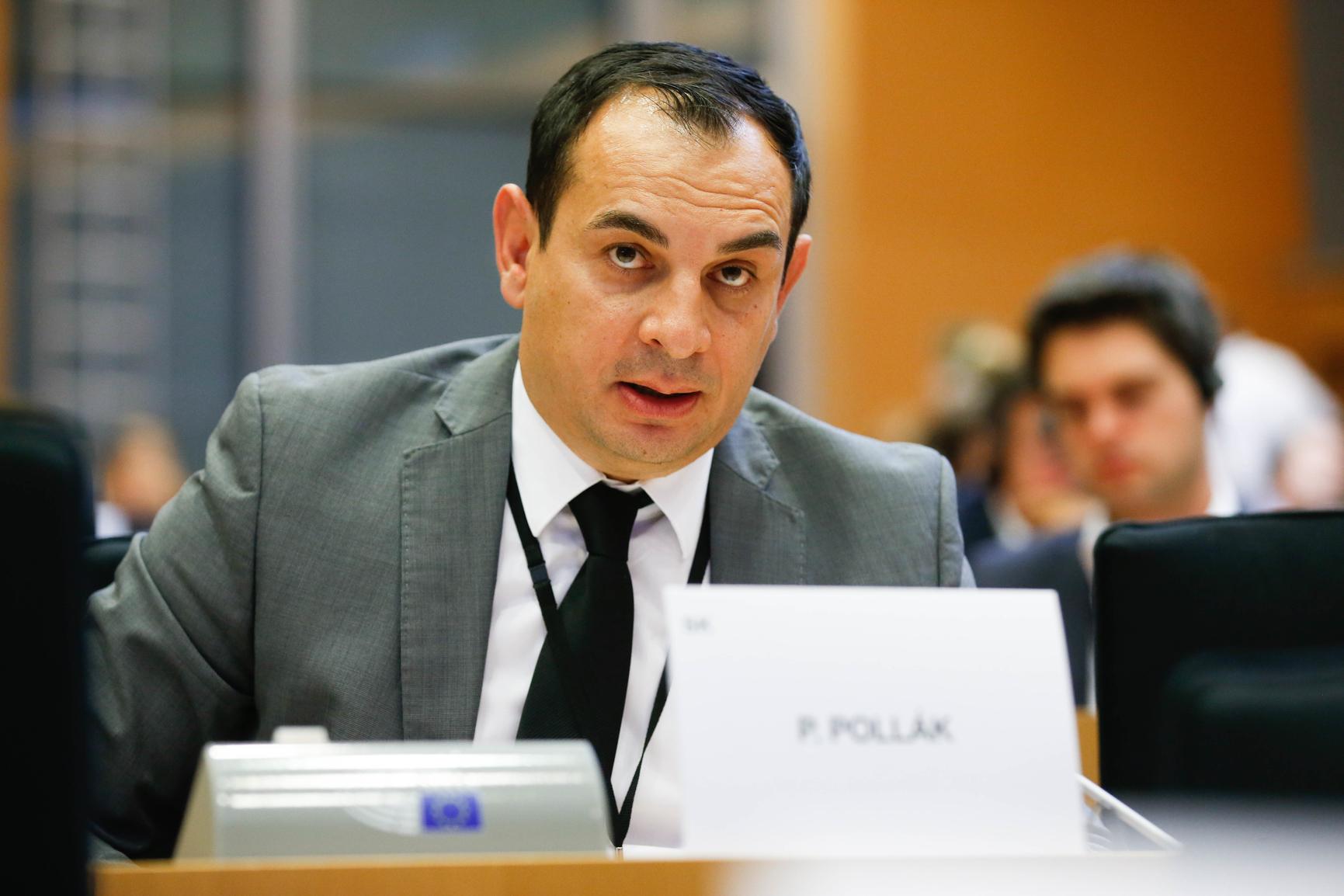 Peter Pollák MEP